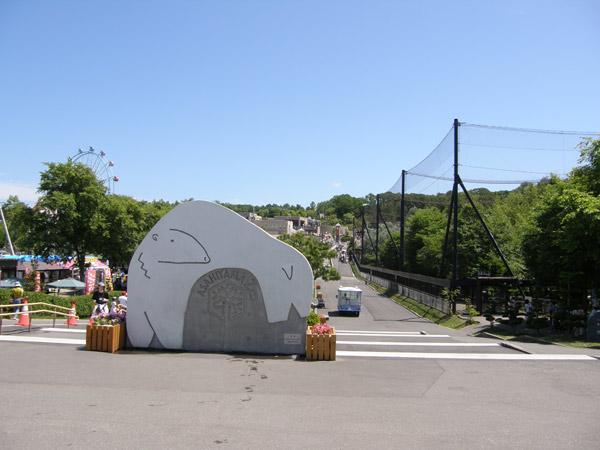 旭山動物園(旭川市)の写真画像 その9
