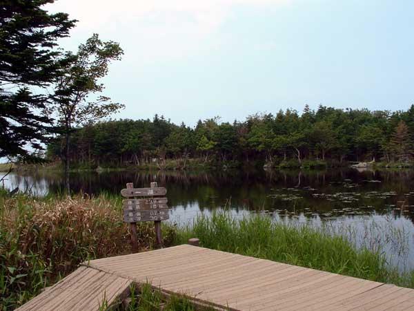 北海道風景写真画像 知床 知床五湖