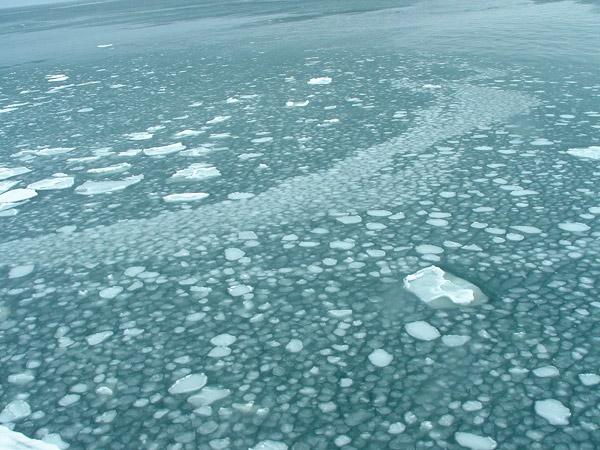 北海道風景写真画像 オホーツクタワーの流氷1