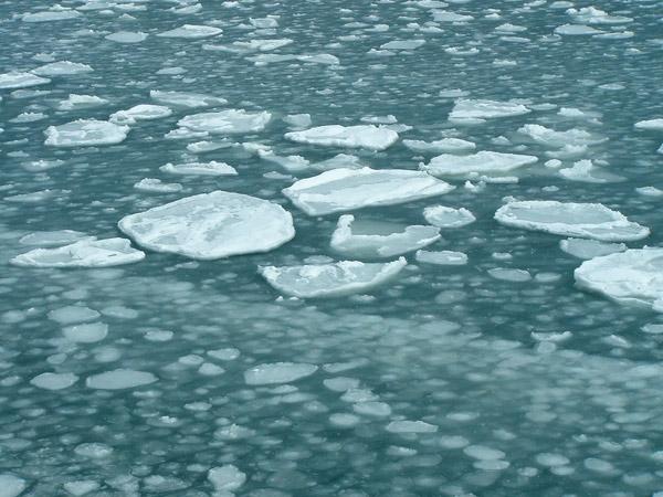 北海道風景写真画像 オホーツクタワーの流氷2