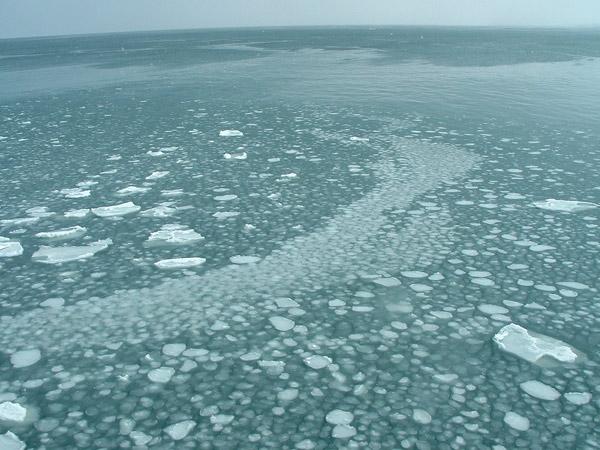 北海道風景写真画像 オホーツクタワーの流氷3